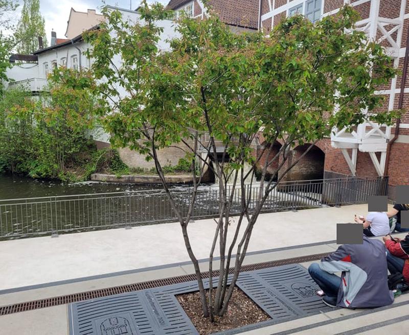 Kupferhofterrassen, Bergedorfer Hafen, Bepflanzung, Begrünung, grün und bunt, Platz zum Verweilen, Nachrichten, News, Hamburg